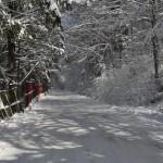 Drumul catre Semenic