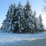 iarna pe Semenic